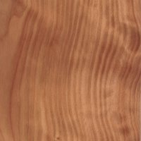 australian cypress from St. Petersburg in Pinellas county FL locally cut and milled