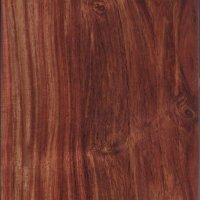 indian rosewood from St. Petersburg in Pinellas county FL locally cut and milled